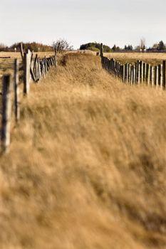 Farm Trail and Fence