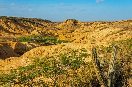 Desolate Desert Landscape
