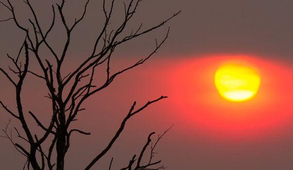 Mysterious sunset