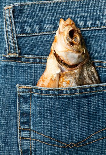 Fish in a pocket