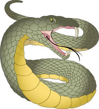 Snake, illustration