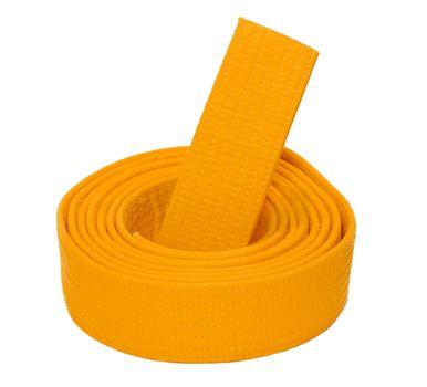 Coiled Karate Orange Belt