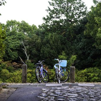 Bicycles of couple in countryside meadows