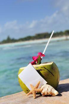 Caribbean paradise beach coconuts cocktail