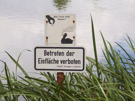 Do not feed the ducks