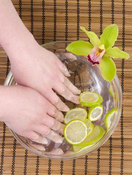 Wellness for hands