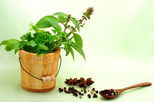 Collection of herbs with peppercorn