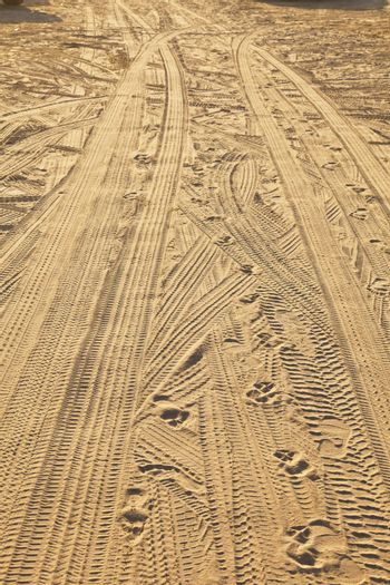 marks of car tires at the beach