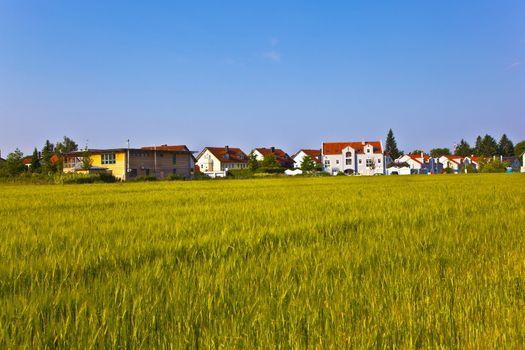 new housing area near the meadow in beautiful landscape