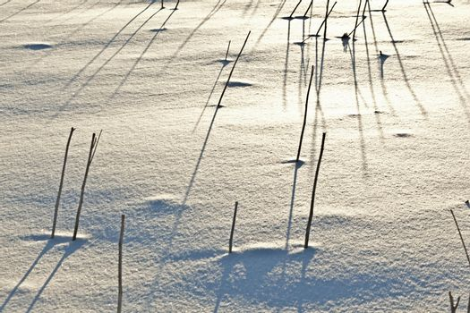 shadow of halm on snow covered field