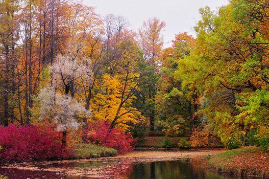 Autumn landscape. Russia. St. Petersburg