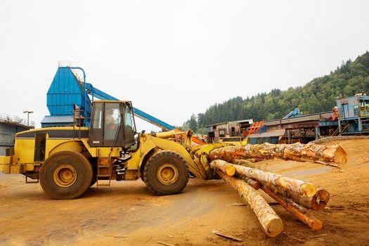 Logging Forklift at Mill
