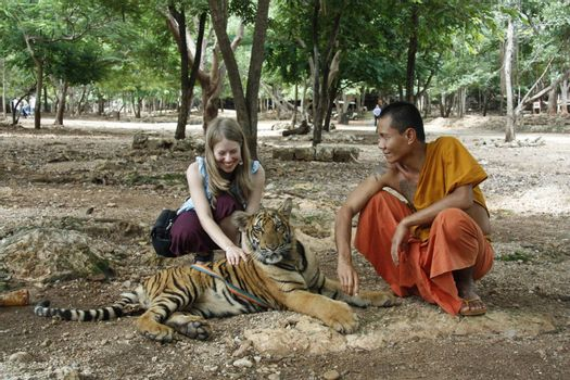 Buddhist monk and young tourist girl with the Tiger in a Tiger Temple, Kanchanaburi province, Thailand