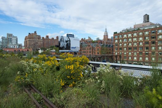 NEW YORK CITY - JUL 22 : High Line Park in NYC on July 22th, 2012. The High Line is a public park built on an historic freight rail line elevated above the streets on Manhattans West Side.