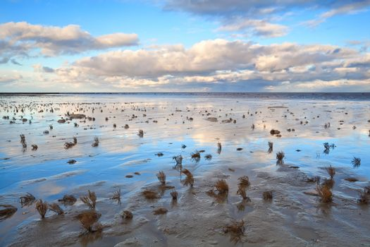 low tide in North sea