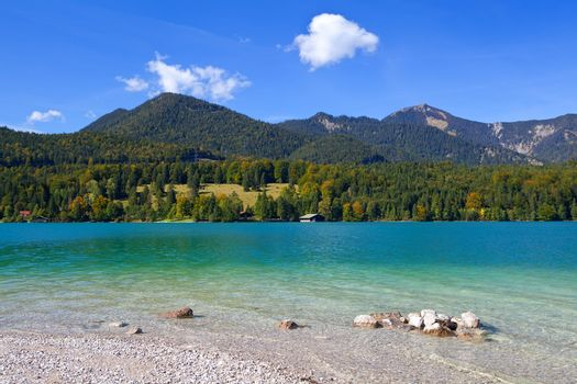 lavender Walchensee in Germany