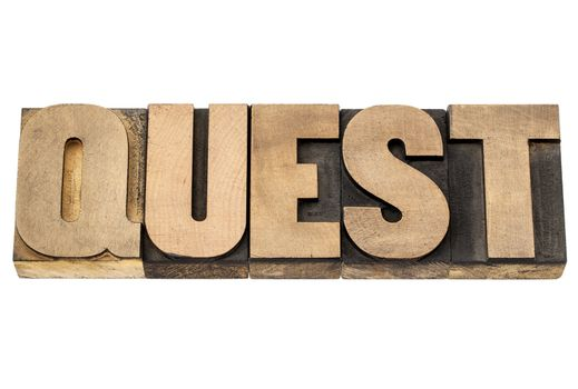 quest word in wood type