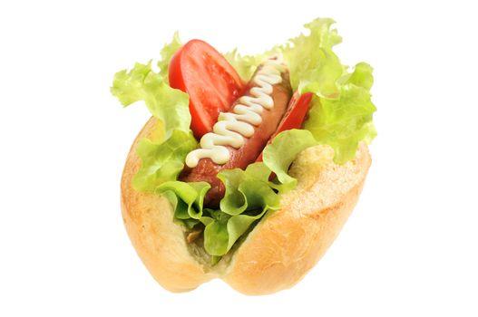 Tasty and delicious hotdog