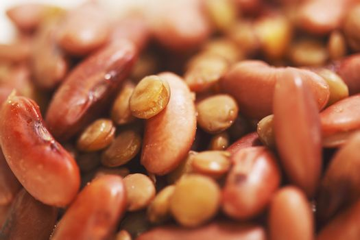 Cooked red beans and lentils