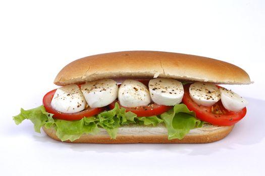 Sandwich with mozzarella tomato and salad