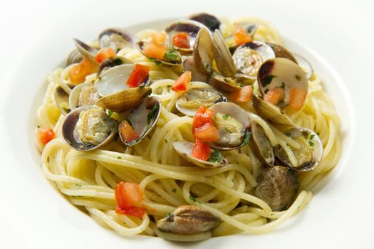 white dish of spaghetti,clams and tomatoes