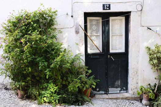 vintage spirit in Lisbon