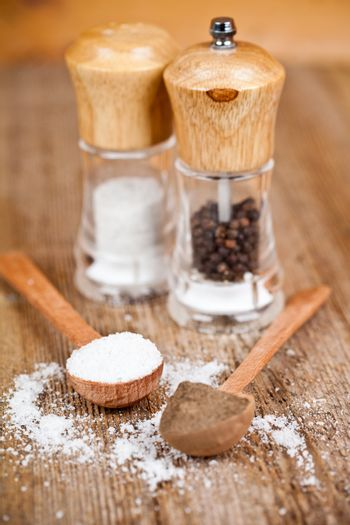 salt and pepper in spoons and shakers