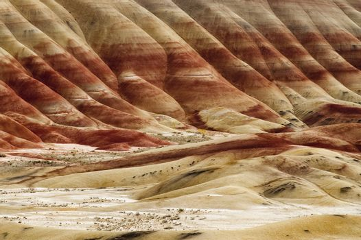The Geology in Painted Hills Oregon State