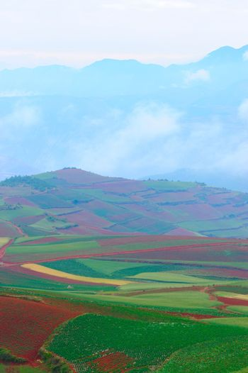 Field landscape in Yunnan Province, southwest of China