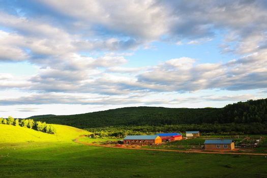 Grassland in Hulun Buir League of Inner-Mongolia, China