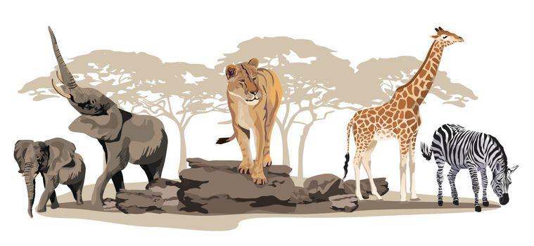 Illustration of African animals on savannah isolated on white