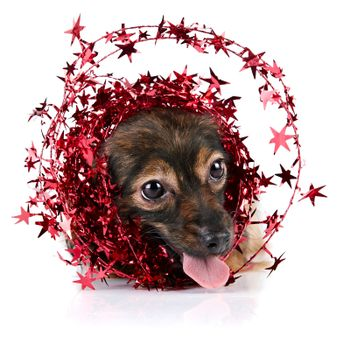 Decorative dog with ornament from tinsel and stars