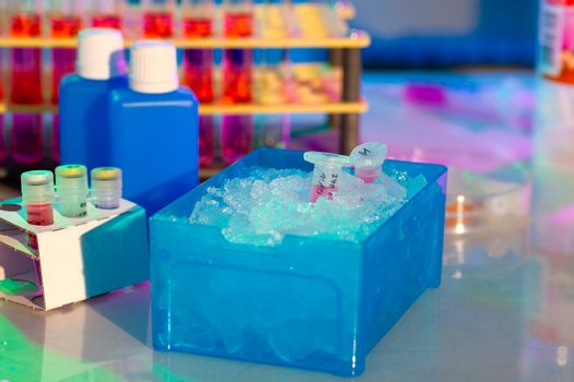 reaction plastic tube in a box full of ice