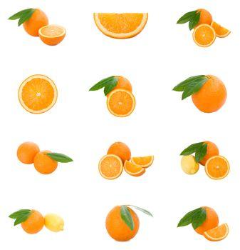 set of oranges, isolated on white