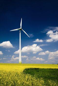 Windmill with rape