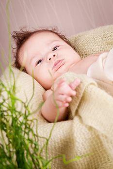 sweet little baby infant toddler on white  blanket in basket at home