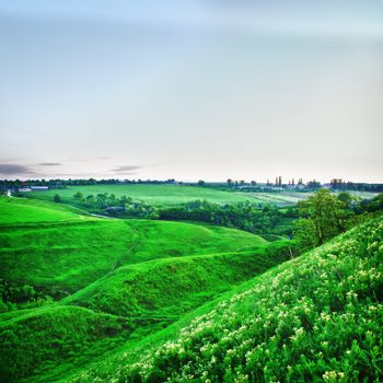 summer landscape with green meadows at evening