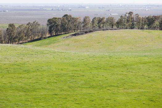 Scenic Grasslands and Farming Landscape
