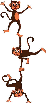 monkey's cartoon attraction