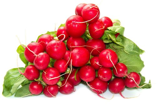 a group of red radishes on white background
