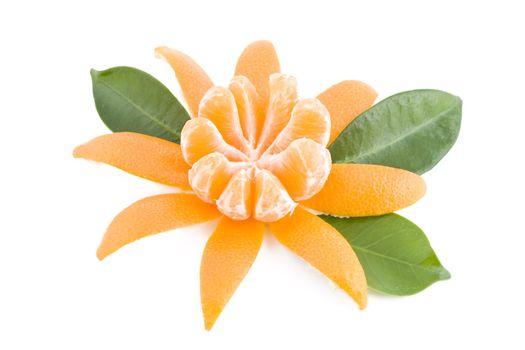 Juicy tangerine