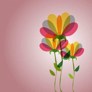 Cute transparency flowers