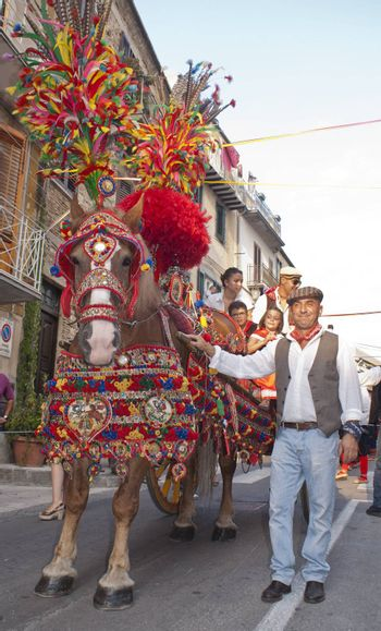 """POLIZZI GENEROSA, SICILY - AUGUST 19:Folkloristic parade of traditional horse-cart in Sicily during the """"Festival of hazelnuts"""",launch of hazelnuts: August 19, 2012 in Polizzi Generosa,Sicily, Italy"""
