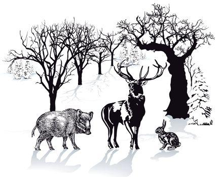 Deer, wild boar and rabbit in winter landscape