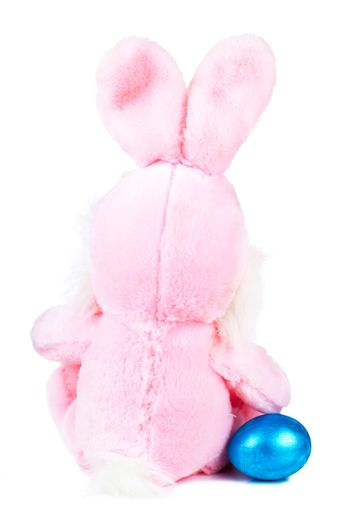 Pink bunny with blue egg isolated over white background