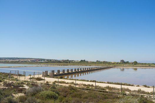 Santa Pola salt marsh