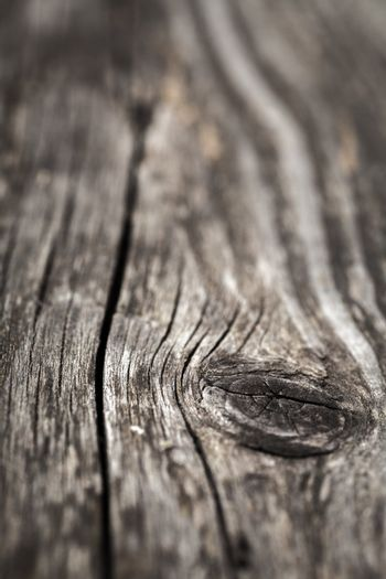 Macro view of wooden knot