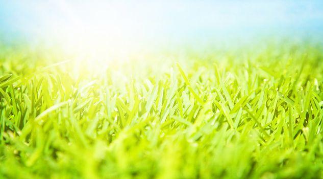 Beautiful springtime landscape, sunny day, fresh green grass, blue sky, rural field, spring nature
