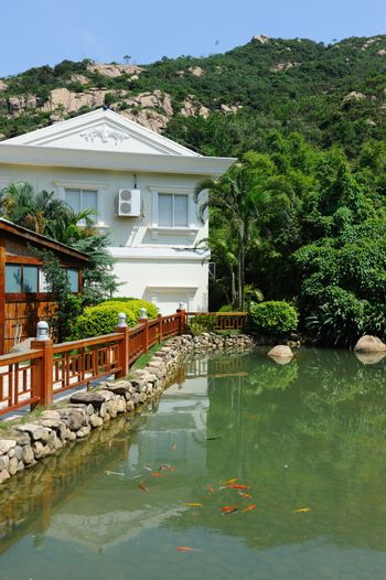 Garden with pond, tree, mountain and building background