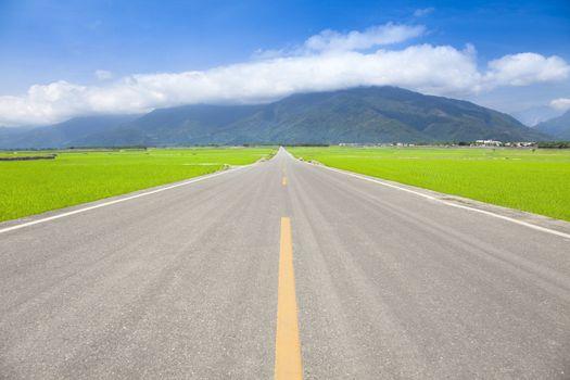 the road pass trough green rice field. taitung.taiwan.